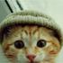 bitlikedi için avatar