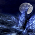 Avatar for Araken_Starway